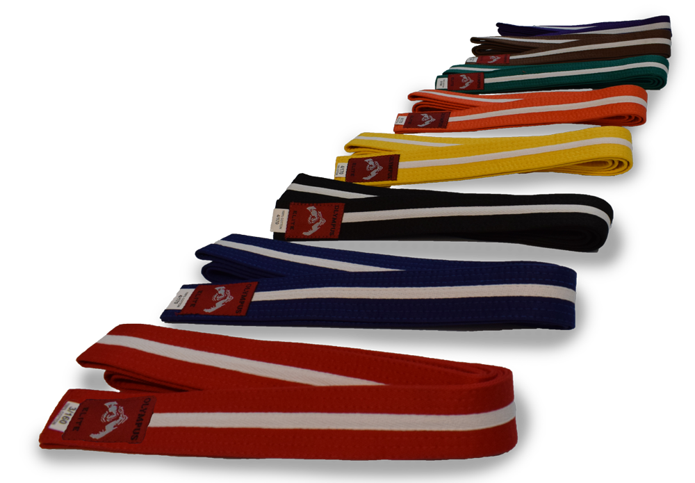 Buy Colour Belt with White Stripe in NZ New Zealand.